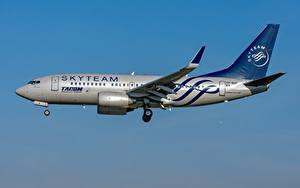 Фото Самолеты Пассажирские Самолеты Boeing TAROM Romanian 737-700W