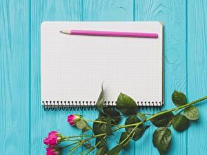 Картинка Карандашей Шаблон поздравительной открытки Блокнот