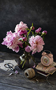 Картинка Пионы Часы Будильник Доски Вазе Бутон Розовая Книги Цветы
