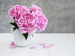Картинка Пион Вазе Розовая цветок