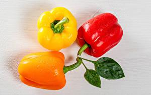 Фотографии Перец Вблизи Втроем Разноцветные Пища