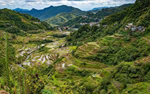 Фотография Филиппины Гора Поля Сверху Banaue rice terraces, Ifugao
