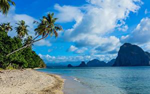 Обои Филиппины Пейзаж Тропический Берег Гора Небо Море Пальмы Песка Облако Природа