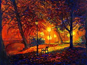 Фотография Картина Парки Осень Скамейка В ночи Уличные фонари Дерево Природа
