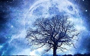 Картинка Планеты Звезды Деревьев Силуэты Ветки Фантастика Космос