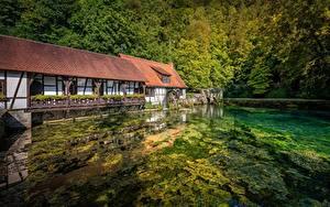 Фотографии Пруд Лес Германия Водяная мельница Blaubeuren, Baden-Württemberg Природа