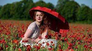 Фотографии Мак Красный Рыжих Взгляд Сидит Зонтик Девушки