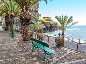 Картинка Португалия Побережье Здания Скамейка Пальмы Madeira Ponta do Sol