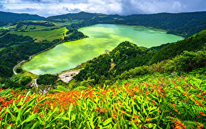 Обои Португалия Берег Гора Озеро Сверху Azores, Furnas Lake Природа