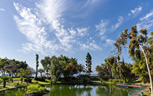 Фотография Португалия Парк Пруд Забор Деревьев Santa Catarina Park in Funchal Madeira
