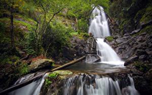 Картинка Португалия Речка Камни Водопады Дерево Мох Coimbra Природа