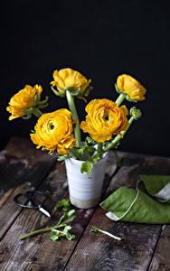 Картинки Лютик Доски Ваза Желтый Цветы