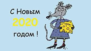 Обои для рабочего стола Крысы Сыры Новый год Слово - Надпись 2020 Русские
