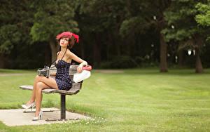 Обои Ретро Трава Скамейка Шатенки Шляпы Платье Сидит Ног Туфли Фотокамера Casey Carlson девушка
