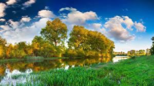 Фотографии Река Лето Траве Деревья
