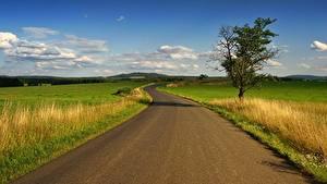 Фото Дороги Трава Облака