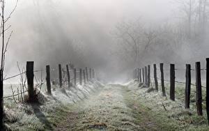 Обои для рабочего стола Дороги Траве Забором Туман Природа