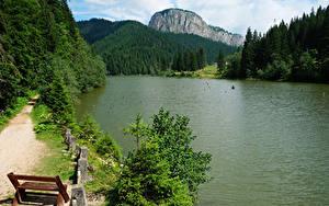 Обои Румыния Горы Леса Озеро Скамейка Red Lake Transylvania Природа