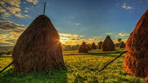 Фотографии Румыния Пейзаж Рассветы и закаты Небо Поля Сено Траве Природа