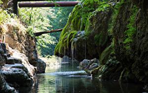 Картинки Румыния Водопады Речка Утес Мох Cascade Bigar