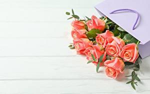 Обои для рабочего стола Роза Букеты Бумажный пакет Доски Шаблон поздравительной открытки Цветы