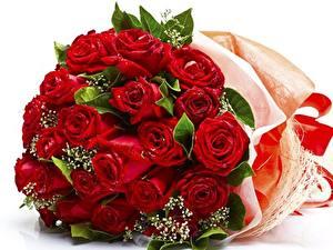 Фотографии Роза Букеты Красный цветок