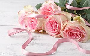 Обои Розы Букет Ленточка Розовых