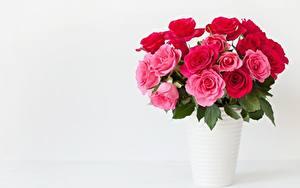 Картинка Розы Букет Вазы Розовый Шаблон поздравительной открытки