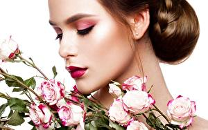 Фотографии Розы Шатенка Фотомодель Мейкап Причёска Белым фоном молодые женщины Цветы