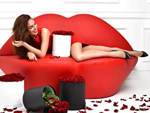 Картинка Розы Шатенка Диван Улыбка Лепестки Красный Девушки