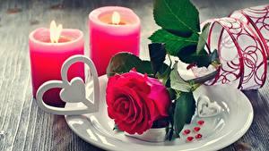 Картинки Розы Свечи Пламя День всех влюблённых Тарелка Сердечко Цветы