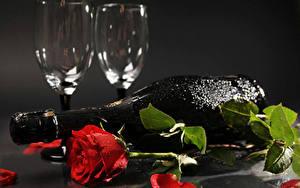 Картинка Розы Шампанское Сером фоне Красная Лепестков Бутылка Бокал Капли цветок