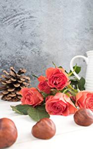 Картинка Розы Каштан Розовый Шишки Цветы