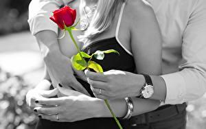 Фотография Розы Часы Любовники Двое Объятие Руки Кольцо