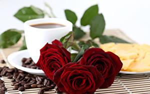 Фотографии Розы Кофе Трое 3 Бордовый Зерна Цветы