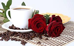 Фотографии Розы Кофе Бордовый Чашка Зерна Цветы Еда