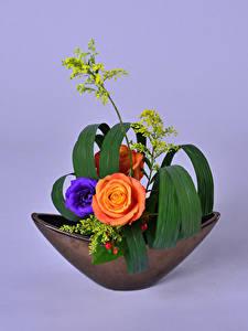 Фото Розы Эустома Икебана Цветной фон Дизайна Цветы