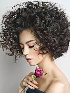 Картинки Розы Пальцы Брюнетка Лицо Волосы Девушки