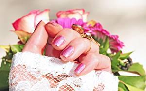 Фото Розы Пальцы Крупным планом Рука Маникюр Ювелирное кольцо Золотые