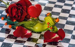 Картинки Роза Лягушка Сердечко Лепестков Бордовая Цветы