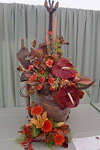 Обои Роза Гербера Антуриум Дизайн цветок