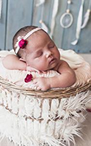 Фото Розы Грудной ребёнок Спит Ребёнок