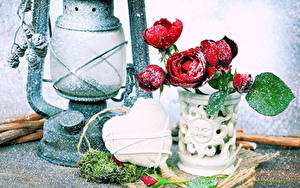 Картинки Розы Керосиновая лампа Ваза Снег Сердечко