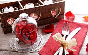 Обои Розы Ножик Красный Лепестки Вилка столовая Бантик Цветы