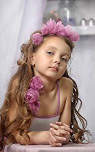 Фотографии Розы Девочки Модель Смотрит Шатенка Ребёнок