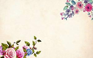Фотографии Роза Рисованные Шаблон поздравительной открытки Цветы