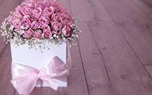 Картинка Роза Розовая Бантик Коробке Подарков Цветы