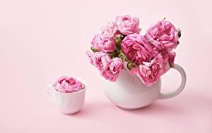 Обои Розы Розовые Чашка Ваза цветок