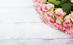 Картинка Роза Шаблон поздравительной открытки Доски цветок