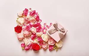 Картинки Роза День всех влюблённых Сердечко Бантики Коробки Подарок Бутон